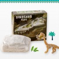 공룡화석을 찾아라