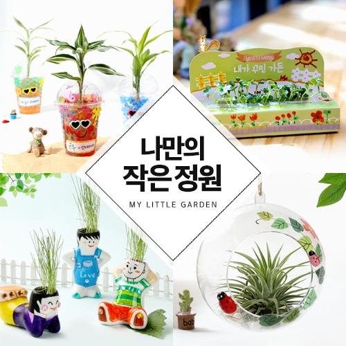 식물기르기모음전